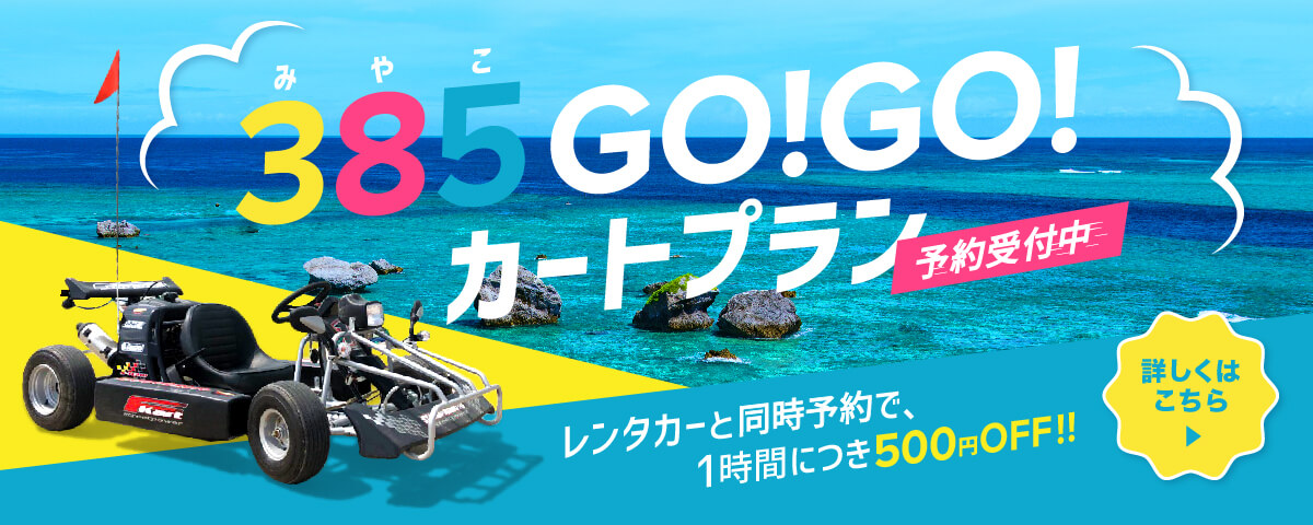 385GO!GO!カートプラン(予約受付中) レンタカーと同時予約で、1時間につき500円OFF!!